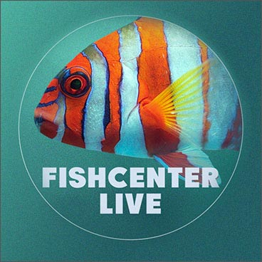 Fishcenter