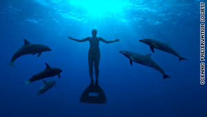 "Filmmaker Louie Psihoyos exposes the dolphin-capture-and-slaughter industry in ""The Cove."""