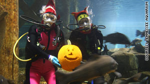 "The Tennessee Aquarium in Chattanooga is hosting ""Thrills, Gills and Chills"" special events in October."