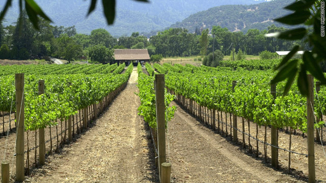 Napa's 400 wineries produce only 4 percent of the state's wine. The focus here is quality, not quantity.