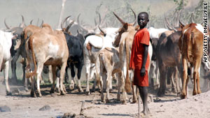 A boy rounds up cattle in a southern Sudanese settlement in the state of Jonglei.