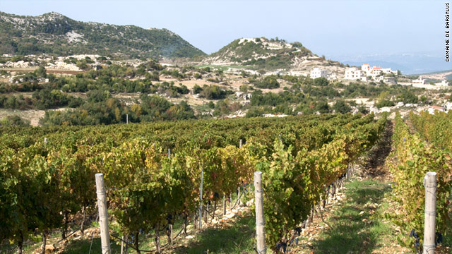 Domaine Bargylus is Syria's first private vineyard and is producing high-quality wine with European techniques.