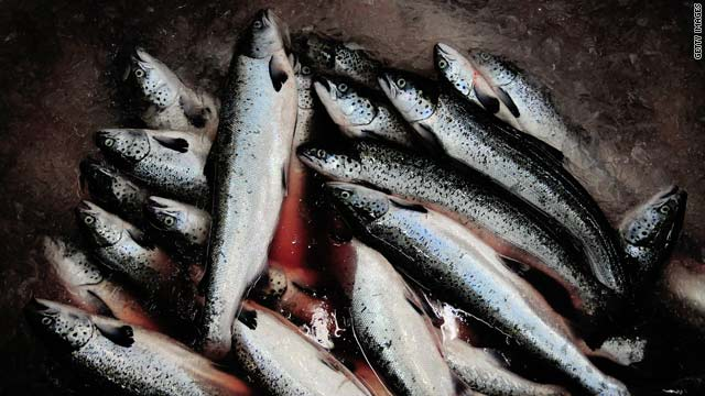 Anyone concerned about contamination issues should try to find out where their fish came from, one expert said.