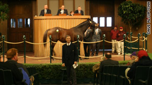 This year's Keeneland Auction brought in less than $24 million -- down 27 percent from last year.