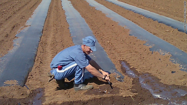 Some Florida prison inmates learn about farming and get to share the fresh food they help grow.