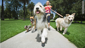 Owners of pampered pets are willing to pay people to take their pooches for a walk.
