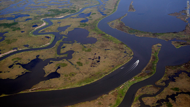 t1larg.mississippi.river.wetlands.gi.jpg