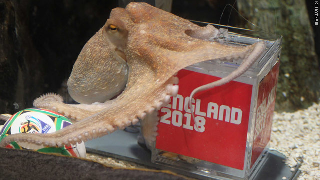 Paul the Octopus is returning to his native England to boost his country's ailing bid to stage the 2018 World Cup.