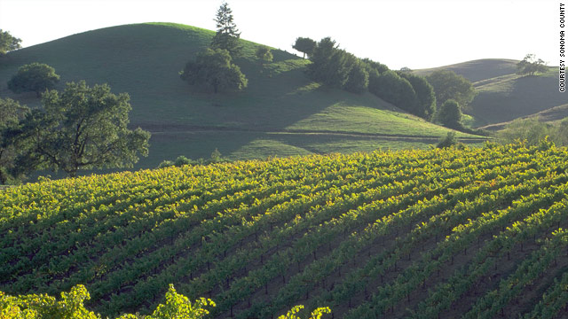 Sonoma County, California, offers wine and interesting natural and manmade attractions for the whole family.