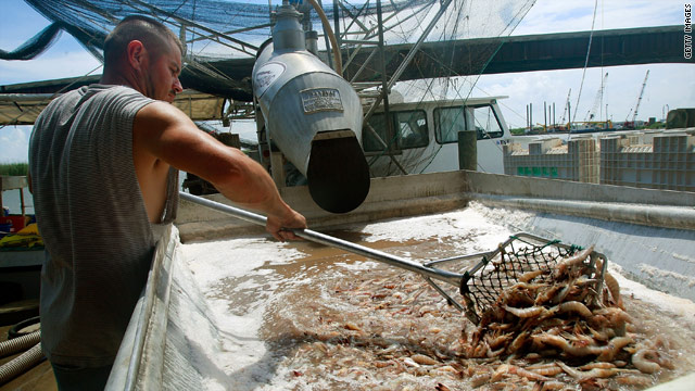 People in Lousiana's important seafood industry fear the coming oil spill could be disastrous.