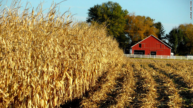 Afghan and Pakistani farmers visit Iowa cornfield