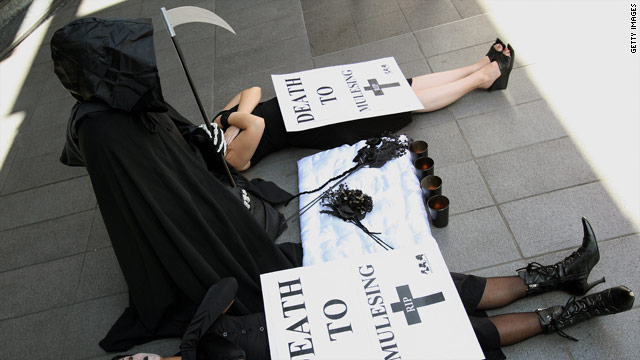 Members of the group Animal Liberation Front have protested use of animals in research throughout the world.