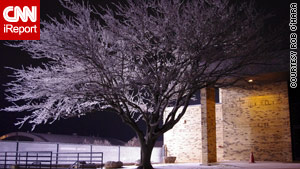 Snow and ice coated this tree in Yukon, Oklahoma, late last week.