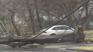 Wind and rain on Saturday wreaked havoc on trees and power lines in the Northeast.