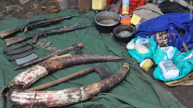 Tools and rifles were confiscated by Kenya Wildlife Service rangers in an exchange of gunfire with ivory-poaching suspects.