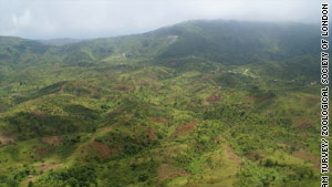 Haiti's fragile forests facing disaster
