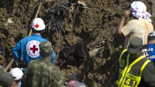 A sniffer dog seeks for survivors at La Gabriela neighborhood, department of Antioquia, on December 6 , 2010.