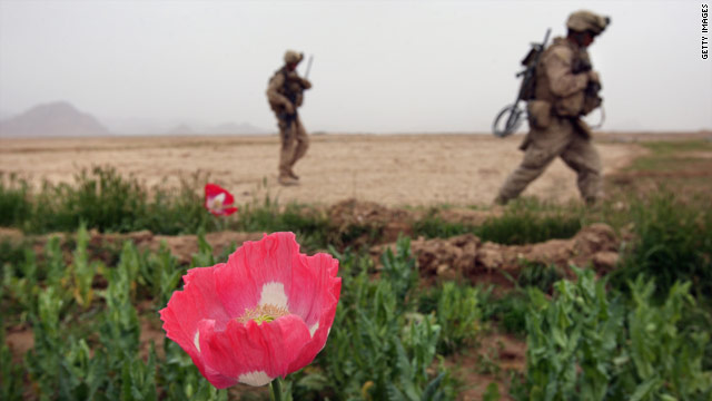 http://i.cdn.turner.com/cnn/2010/WORLD/asiapcf/09/16/afghanistan.biofuel.eco/t1larg.poppy.jpg