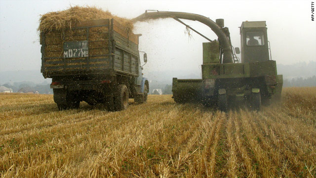 A harvester near a village south of Moscow on August 15, 2010. On Monday Russia said it would start exporting flour in 2011.