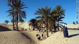 Tourism is beginning to take center stage in Tunisia's economy.
