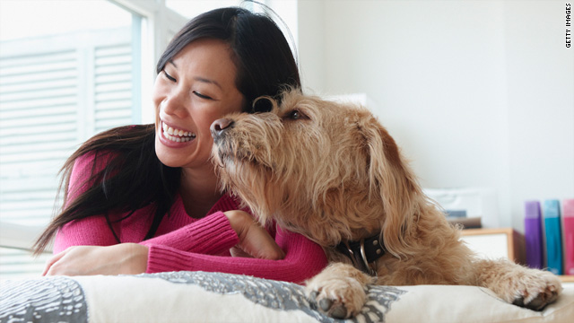 Dog petting has been shown to improve immune function and ease pain, or at least the perception of it.