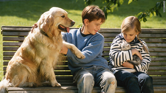 Spring is in the air. Did you know that your pets could have allergies, too?
