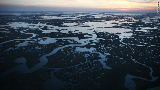 Louisiana's Bataria Bay, with its fragile wetlands, was one of the regions hit hardest by the BP oil spill.