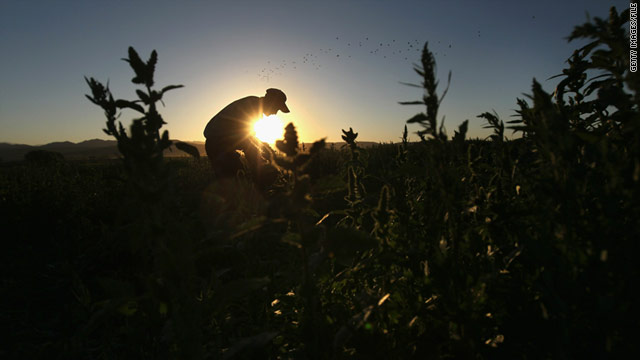 Immigration law worries farmers about labor shortages