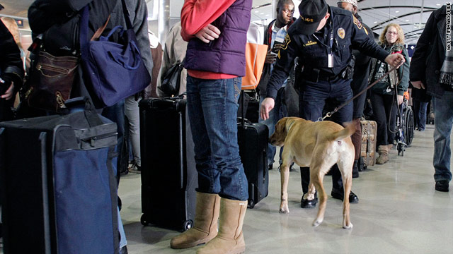 Spencer, a bomb-sniffing dog, checks a suitcase at the airport.