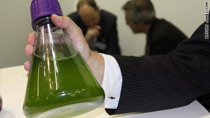 Are biofuels the future of flight?