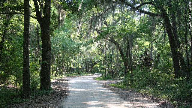 Guests at the Blue Heron Inn, located at the end of this road along the Georgia coast, often get lost using GPS devices.