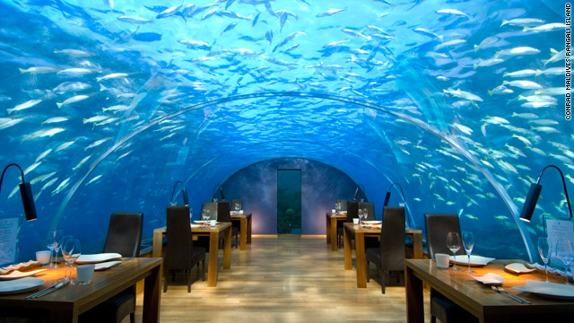 Ithaa Undersea Restaurant is nestled under the Indian Ocean in the Maldive Islands.
