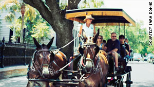Take a scenic carriage ride through Charleston for a nice overview.