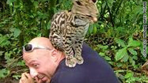 An ocelot jumped on Rob Pisani's back when the couple was visiting Arenal Volcano.