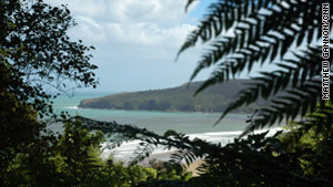 At the Waipati Beach Scenic Reserve a scenic walk through the forest opens abruptly onto Waopati Beach, where visitors can explore the Cathedral Caves.