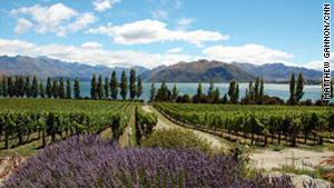 The Rippon Vineyard, located on the shores of Lake Wanaka in the Central Otago, offers beautiful views of snow-capped mountain peaks in the distance.