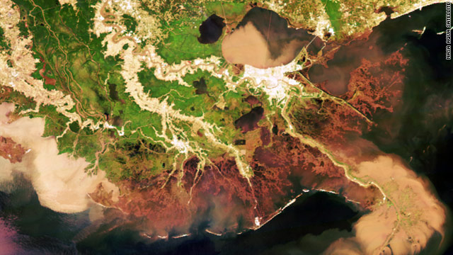 Satellite image shows the large amount of sediment that has been deposited along the coastline and wetlands of Louisiana.