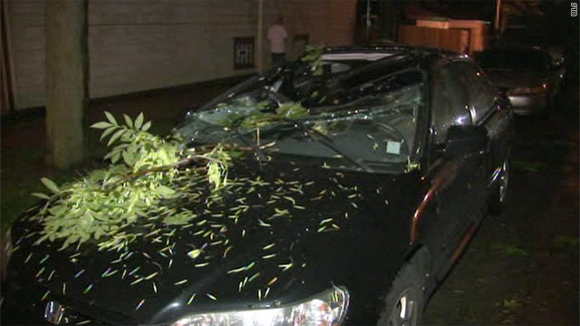 Tuesday night's storms in the Chicago area blew trees and limbs onto vehicles and power lines.
