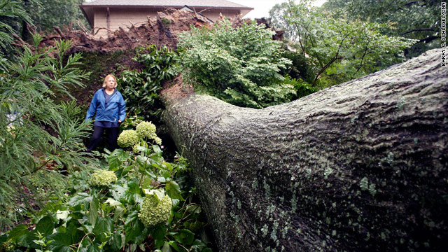 A large tree falls due to Hurricane Irene, causing power failures in Silver Spring, Maryland, on Sunday.