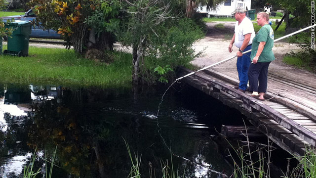 Searchers returned to the canals around Margaret Webb's yard Thursday to look for the alligator.