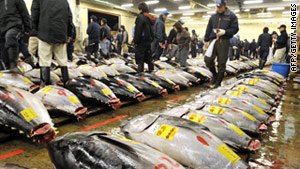 At the New Year tuna auction in Tokyo, a 754-pound  giant bluefin tuna sold for a record 32.49 million yen, or $396,000.