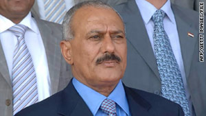 Some Yemeni demonstrators are demanding that President Ali Abdullah Saleh step down, while others want him to stay.