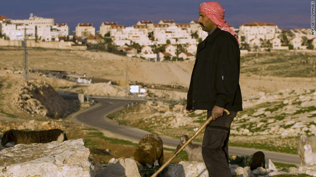 A Palestinian shepherd leads his herd near a West Bank Jewish settlement on February 14, 2011.