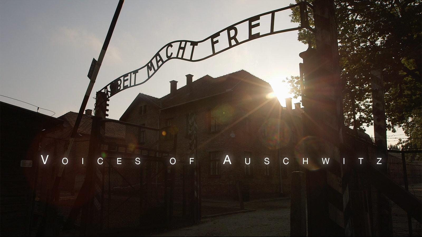 Auschwitz social no badge