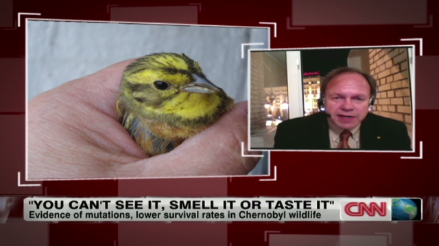 Health effects of the Chernobyl accident: an overview