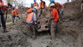 علماء يعثرون على أكثر هيكل عظمي لفيل منقرض