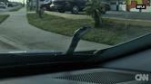 أفعى تفاجئ سائق بخروجها من غطاء محرك سيارته