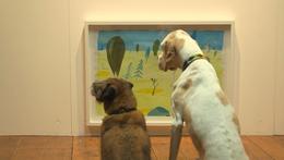 معرض فني زواره من الكلاب فقط!