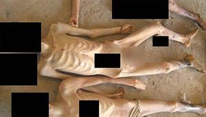 صورة تظهر مزيدا من الجثث الهزيلة، يزعم أنهم قتلوا في السجون السورية