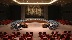 المنشاوي في مقال عن مجلس الأمن بالشأن الفلسطيني..